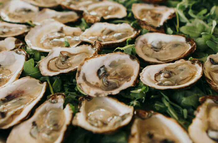 Pacific Yacht Charters Catering Services